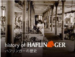 ハフリンガーの歴史